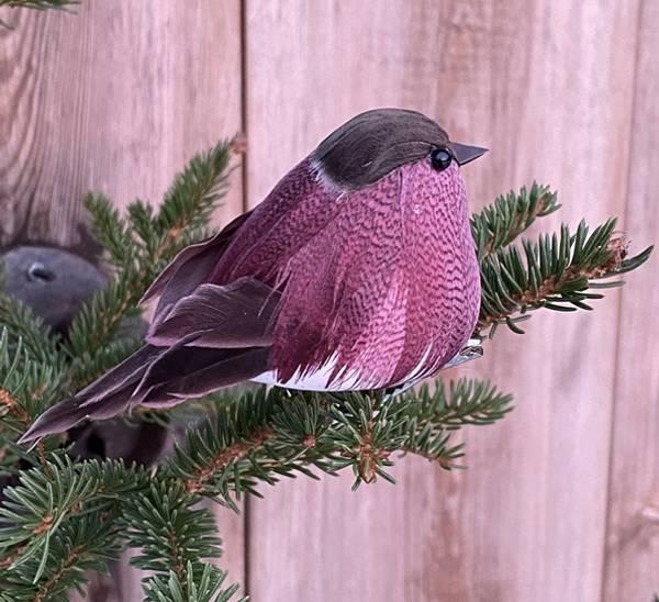 Bilde av Und Småfugl med klips Purple