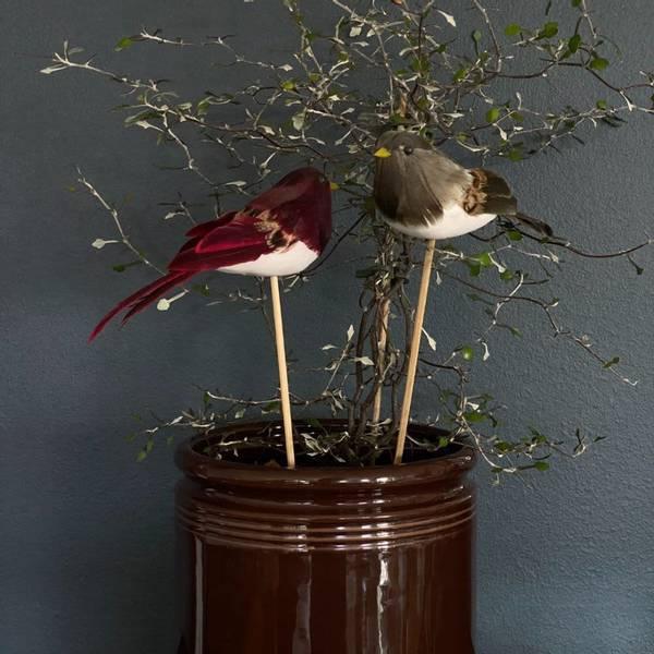 Bilde av Und Småfugl på pinne Natur