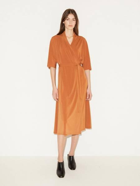 Bilde av By Malene Birger Ivesia Dress